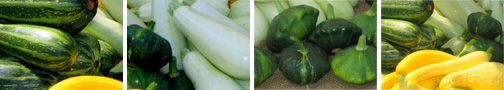 Try a new summer squash recipe tonight!